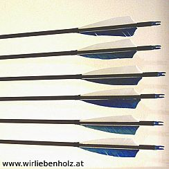 Carbon Arrows Spine 500